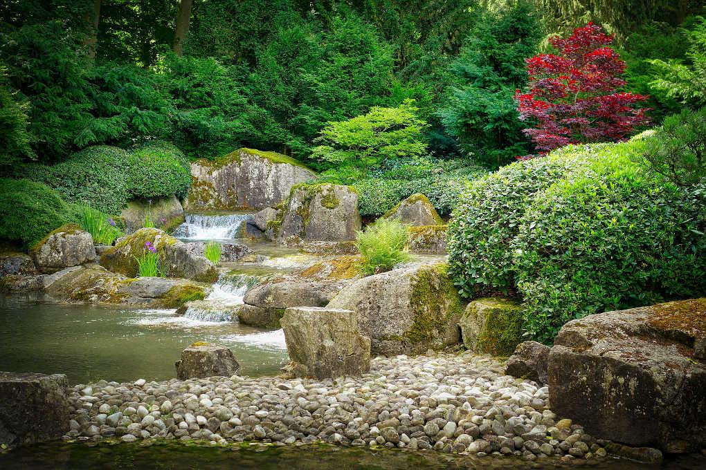 Japanese park by Albrecht Fietz